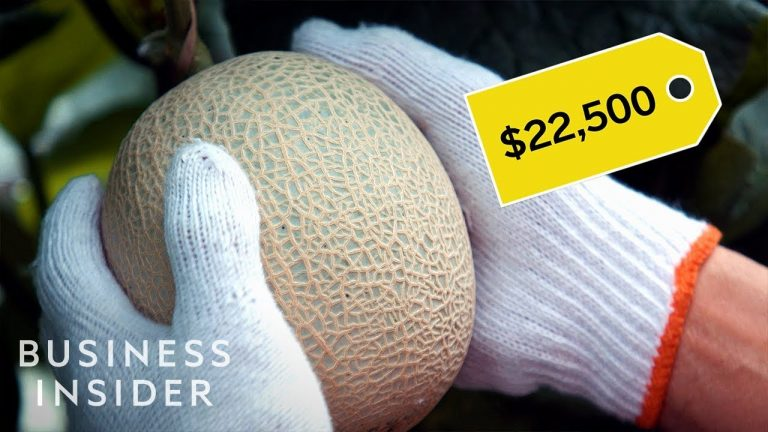 Why Japanese Melons Are So Expensive
