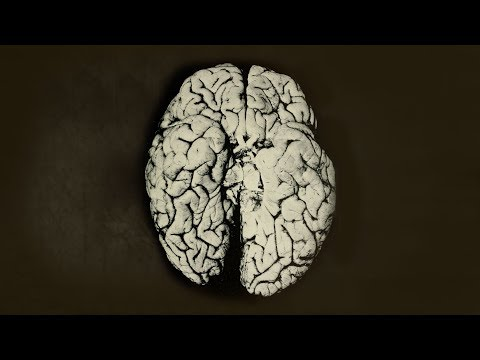 A Dad Drank 50 Beers Everyday For 6 Weeks. This Is What Happened To His Brain.